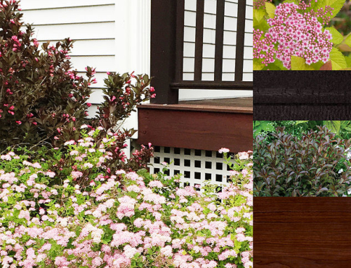 Color-Matching the House to the Garden