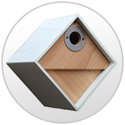 Wildlife World Birdhouse Link