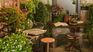 botanical retreat link