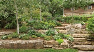 Landscape Gardening hub link image