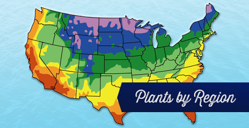 plants by region link