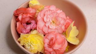 edible flower instagram link