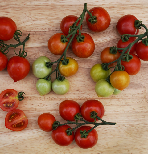 goodhearted tomatoes on cutting board