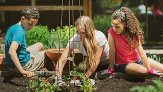 family gardening project link