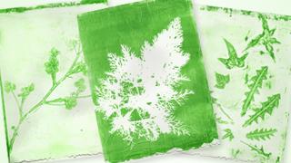 diy gelatin prints link