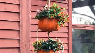 diy hanging pumpkin planter
